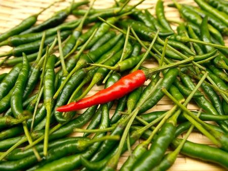 Red chili on green chili photo