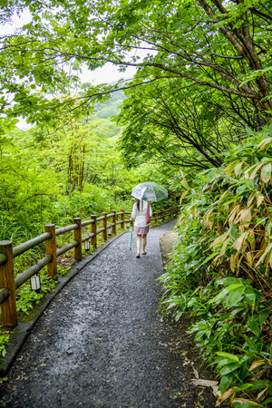 Lady with umbrella walk along the forest photo