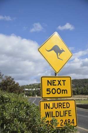 Kangaroo sign in Australia photo
