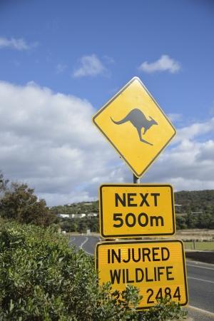 Kangaroo signo en Australia Foto de archivo - 22780517
