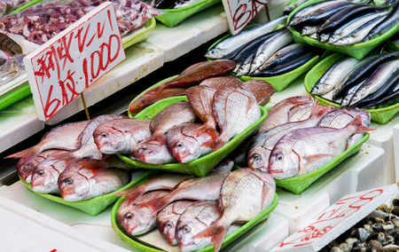 Fresh fish in Japanese market photo