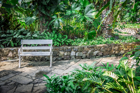 White wood chair in the garden2 Stock Photo - 25423283