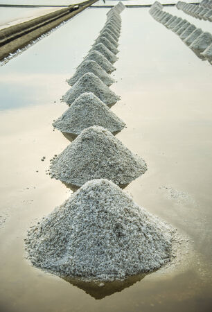 Row of salt in the salt farm photo
