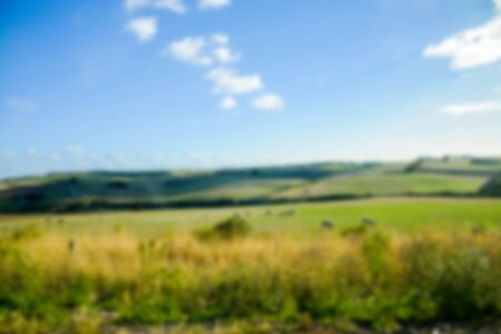 Field in country side in Blur style photo