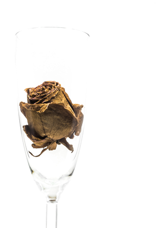 Dried rose flower head inside wine glass isolated on white background Banque d'images