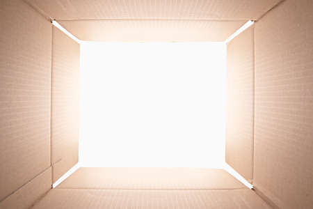 View from inside of a cardboard box