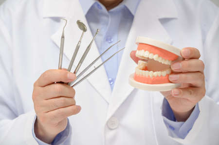 A dentist holding tooth model and dentistry equipment tools in hand. Zdjęcie Seryjne