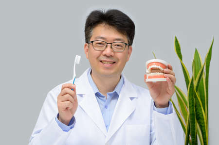 A middle-aged Asian dentist holding dental models and toothbrushes in his hand. Zdjęcie Seryjne