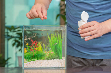 A middle-aged Asian man who feeds the guppy he raises in a small fishbowl.