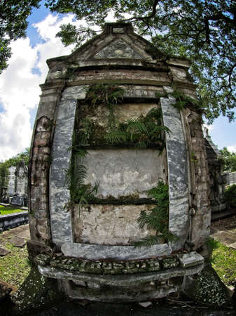 New Orleans, LA USA - Jun 2, 2017  -  Old New Orleans Tomb with Plants Growing Out Of It
