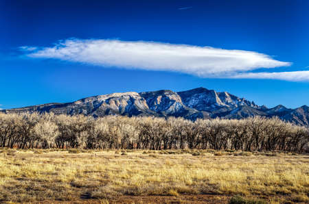Landscape of a Mountain in New Mexico