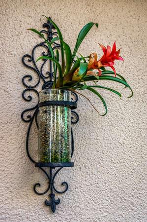 planter: Flower in Planter Stock Photo