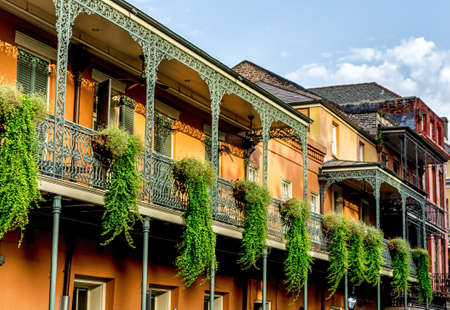 New Orleans LA USA 63015:  Balconies in the French Quarter with plants hanging off of them.
