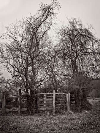 Old Abandoned Corral on a Foggy Afternoon in B&W
