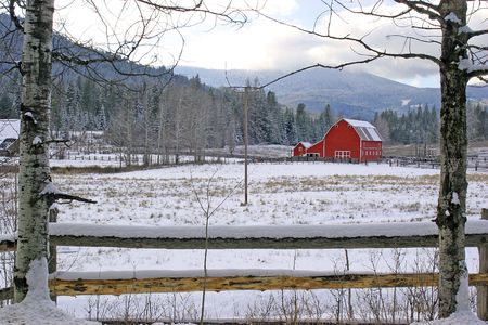 A snow covered field and a red barn. Stock Photo - 2176932