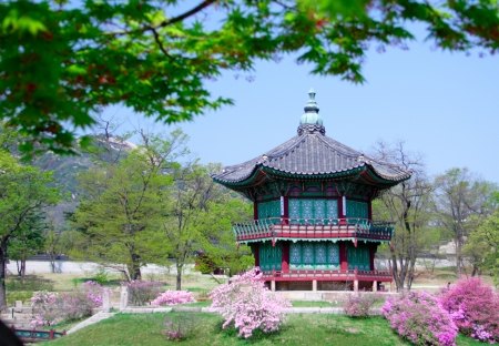 traditional plants: An old Korean pavilion at Kyoungbok Palace in Seoul, Korea.