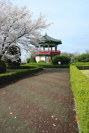 A pathway leads up to a pavillion in a Korean park.