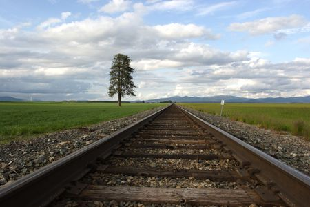 wood railroad: Railroad tracks converging on the horizon in this rural scenic.