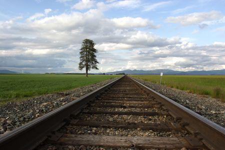 Vías férreas convergen en el horizonte en este rural escénica.  Foto de archivo - 3151399