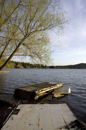 sunken boat: A tree, a dock, and a partly sunken boat. Stock Photo