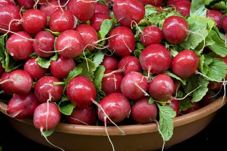 A bunch of fresh radishes in a bowl. Reklamní fotografie
