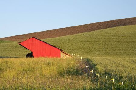 A red barn contrasts against the green crops in the Palouse in Washington. Stock Photo - 7420258
