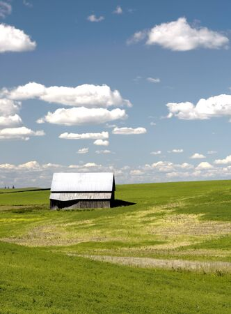 palouse: A barn in a field on a sunny day in the Palouse of Washington state.
