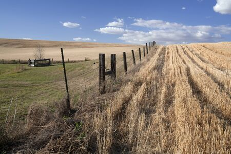 A fence line leads off to the horizon in the palouse. Stock Photo - 7748825