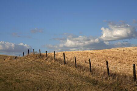 A fence line runs through a wide open farm field in the Palouse region of Washington. Stock Photo - 7748787