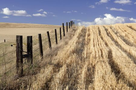 A fence line in a wide open field under a blue sky. Stock Photo - 7748789