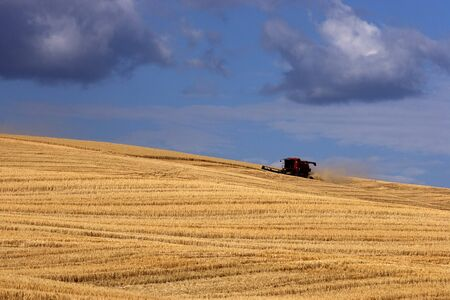 A combine harvests the crops on the Palouse in eastern Washington. photo
