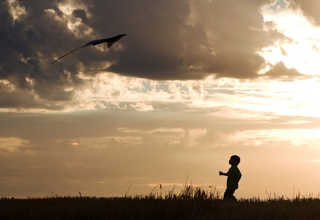pursue: A little boy makes a successful kite flight.