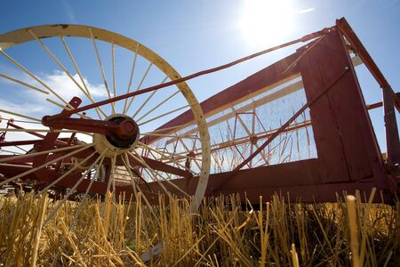 An old fashioned wheat harvester called a swather that is pushed by a team of mules. Banco de Imagens
