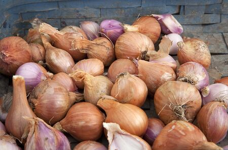 Freshly picked shallots in a bin on display for sale.