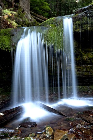 mystical forest: The picturesque Fern Falls located in northern part of Idaho near Pritchard. Stock Photo