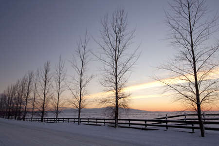 Sunset in the winter on the Rathdrum Prairie in northern Idaho. Stock Photo - 8555481