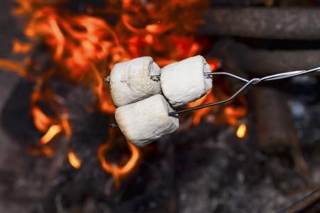 marshmallows: Marshmallows over the fire.