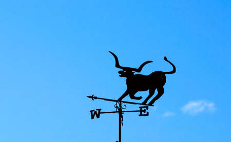 An uncommon weather vane in the shape of a steer. Imagens