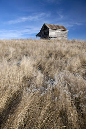Rustic barn and flowing grass   Stock Photo - 16665426