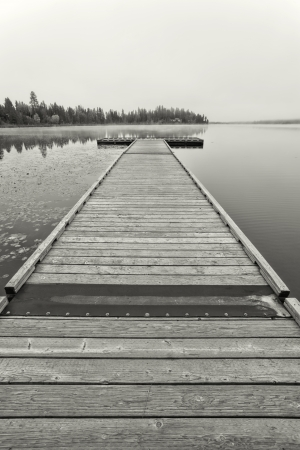 b and w: B W image of a wooden dock