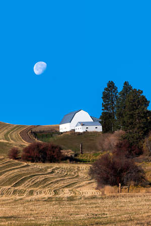 palouse: Barn on the Palouse    Stock Photo