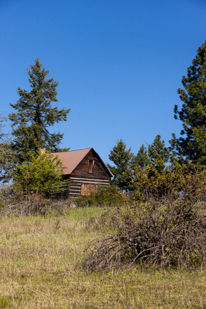 hayden: Cabin in the wilderness near Hayden, Idaho  Editorial
