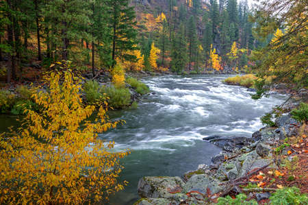 the rapids: Wenatchee River rapids.