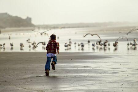 Boy runs toward seagulls in Newport, Oregon. photo