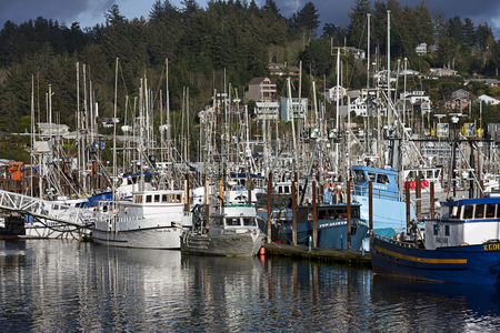 famous industries: Commercial  and private fishing boats docked at the historic bay front in Newport Oregon.