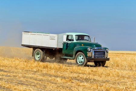 davenport: A vintage farm truck in the field near Davenport, Washington during the vintage harvest. Editorial
