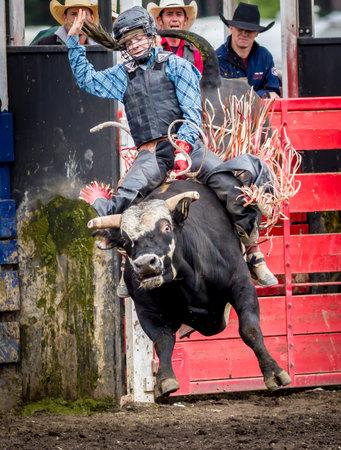 Woman bull rider at the North Idaho fair rodeo August 30, 2015.