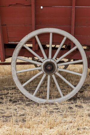 old wood farm wagon: A close up of an old white wagon wheel. Stock Photo