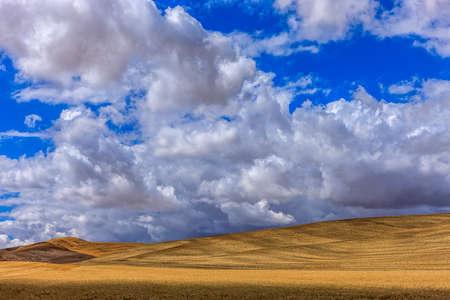 palouse: Rolling hills in the Palouse near Colfax, Washington. Stock Photo