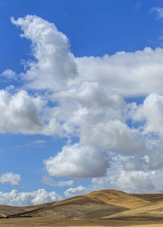 colfax: Fluffy clouds above rolling hills near Colfax, Washington. Stock Photo